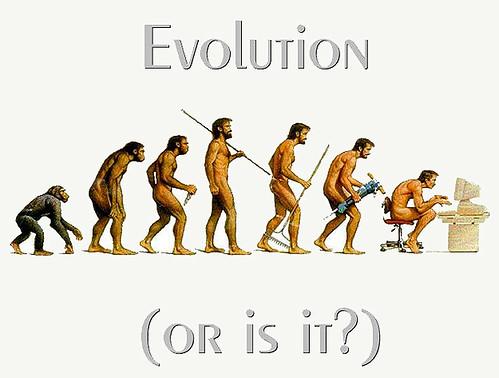 Evolution of Man Paradies