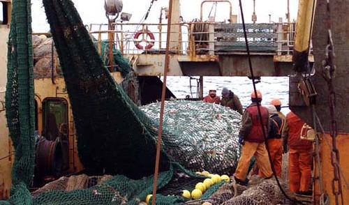 Fishing Vessel Crew